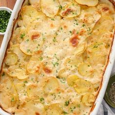 Scalloped Potatoes Recipe - Spend With Pennies - Scalloped potato recipes - Patatoes Scalloped Potatoes Easy, Scalloped Potato Recipes, Scallop Recipes, Spend With Pennies, Casserole Dishes, Squash Casserole, Potato Casserole, Salad Recipes, Cooking Recipes