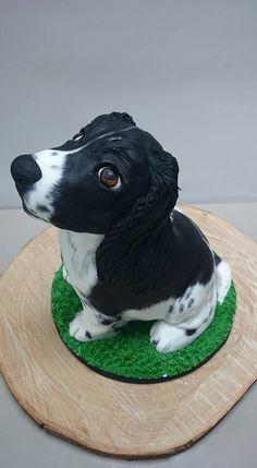 Springer spaniel puppy cake