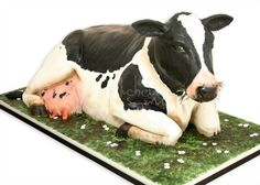 Believe it or not... This is a cake!!!