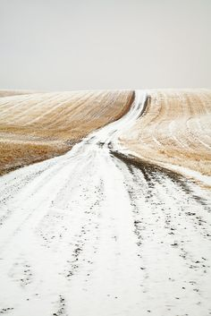 Country road in winter (Davenport, Washington) by Adrian Studer