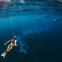 underwater adventure #ELLEMERswimwear :: Sport. Swimwear. Hawaii.