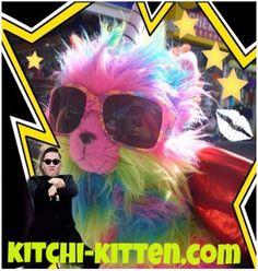 A Rainbow Unicorn Butterfly Kitten with a name that means BRAVE Rainbow Butterfly, Rainbow Unicorn, Unicorn Cat, Gangnam Style, Cool Cats, Brave, Kitten, Celebs, Cool Stuff