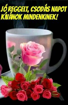 Solve hezký den přeji jigsaw puzzle online with 60 pieces Good Morning Coffee, Good Morning Flowers, Good Morning Messages, Good Morning Greetings, Good Morning Good Night, Good Morning Wishes, Morning Quotes, Morning Thoughts, Night Quotes