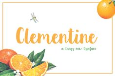 Clementine Script by Sweet Type on Creative Market