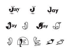 Jay (animated gif)