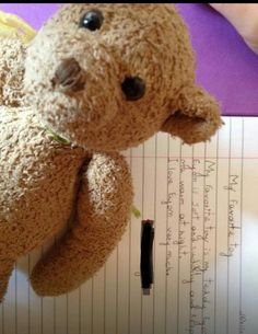 Lost at Palma Airport Majorcia on 28 Aug. 2016 by James: On the of August between and we lost a black child's size sequin rucksack tha All Is Lost, Black Kids, Pet Toys, Plane, Teddy Bear, Europe, Train, Children, Animals