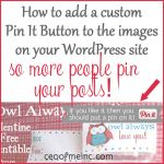 How to add a custom Pinterest Pin It button to your images on WordPress