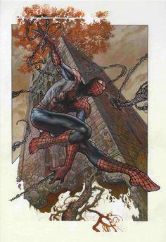 Spider-Man - Simone Bianchi