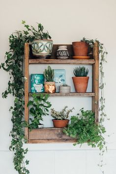 A beautiful and simple kitchen shelf, made from rustic pallet wood to hold herbs and capture the fascinating magic of plants. A beautiful and simple kitchen shelf, made from rustic pallet wood to hold herbs and capture the fascinating magic of plants. Diy Kitchen Shelves, Bathroom Shelves, Kitchen Cabinets, Boho Dekor, Decoration Plante, Home And Deco, My New Room, Indoor Plants, Indoor Ivy