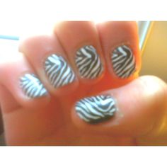 I'm a zebra !