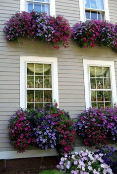 "Awesome window boxes too! Planting the right plants is imperative to get this effect. Looks like ""wave petunias"" which grown like mad in summer heat. Container Plants, Container Gardening, Small Front Yard Landscaping, Landscaping Ideas, Window Box Flowers, Window Planters, Tall Planters, Fence Planters, Garden Windows"