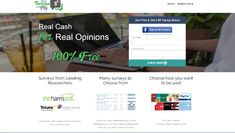Earn cash taking surveys Work From Home Opportunities, Money, Work At Home Opportunities, Silver