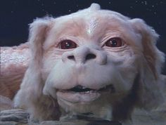 Neverending Story love the movies