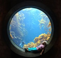 A little girl stares in wonder at an aquarium in Monterey, California. | 15 Stunning Photos That Will Make You Want To See The World