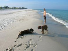 Cape San Blas Florida Beaches This Is Where We Go With The Kids Beautiful