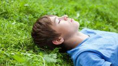Contato com a natureza reduz agressividade de adolescentes