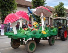 Karneval cveća, 2011. godina