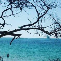 by http://ift.tt/1OJSkeg - Sardegna turismo by italylandscape.com #traveloffers #holiday | #Dalle#dune#spiaggia#MariaPia#l 'nchino#della#nave#da#crociera#by#Alghero#SARDINIA#SARDEGNA#mare#natura#lanuovasardegna# Foto presente anche su http://ift.tt/1tOf9XD | March 24 2016 at 05:05PM (ph maricingotti ) | #traveloffers #holiday | INSERISCI ANCHE TU offerte di turismo in Sardegna http://ift.tt/23nmf3B -