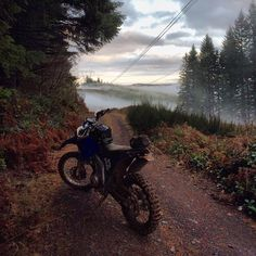 A lovely example of many beautiful things about the Pacific Northwest- in it*s natural habitat during the first annual SFRC Back. Suzuki Dirt Bikes, Honda Dirt Bike, Dirt Bike Gear, Motorcycle Dirt Bike, Scrambler Motorcycle, Anime Motorcycle, Motorbike Cake, Motorcycle Memes, Motorcycle Adventure