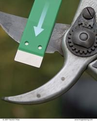 Very thorough article on how to sharpen pruners (takes about 10 minutes). | Fine Gardening | The Complete Garden