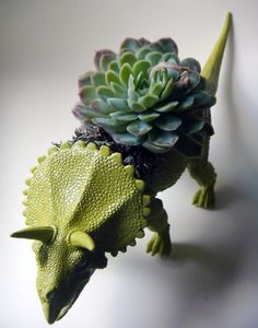 Dinosaur Planters for sale on Etsy! (fun to try to DIY one of these, the kids would love to have a dino garden) Echeveria, Air Plants, Indoor Plants, Planters For Sale, Modern Centerpieces, Pot Plante, Spring Plants, Cactus Y Suculentas, Ceramic Planters
