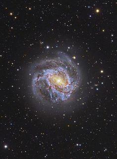 M83 Spiral Universe