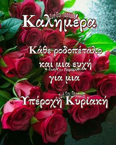 Good Morning Funny, Good Morning Quotes, Good Morning Messages Friends, Beautiful Pink Roses, Saturday Sunday, Places
