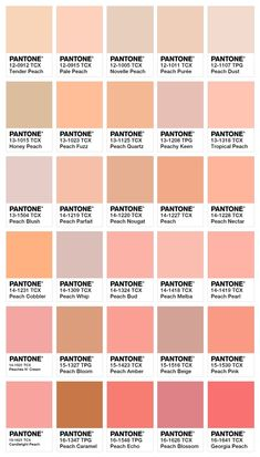 30 shades of peach Pantone Color Chart, Pantone Colour Palettes, Orange Color Palettes, Peach Paint Colors, Wall Colors, Purple Color Names, Colours, Pastel Colors, Colour Pallete
