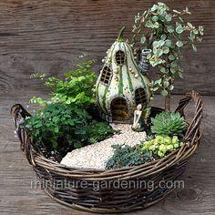 Gourdhouse With Path: #fairygarden #fairyhouses