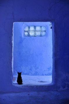 "gimbo60: "" Chefchaouen, Morocco ""                                                                                                                                                                                 もっと見る"