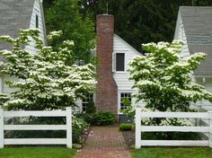 Inviting courtyard with white fence, flowering trees, and brick walkway. Note how the walkway takes your eye to the brick chimney on the side of the house.