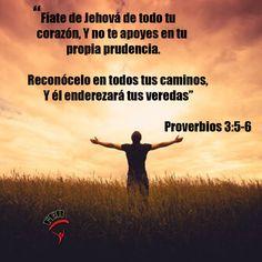 #Proverbios