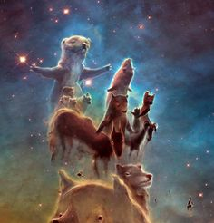 Animals of Creation, just some brushstrokes over NASA´s Pillars of Creation