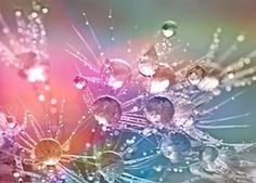 Les moments de folie des moments de légèreté, de joie, d'enthousiasme, vecteur de confiance et d'estime de soi.