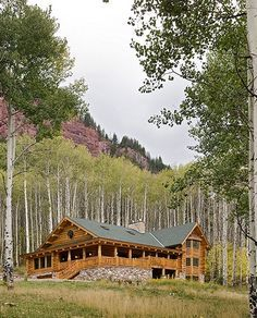 Montana Log Homes - wrap around porch and a view to go with it!