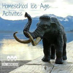 Ice age activities cover science, art, and language arts using the book First Dog! Link to Free Ice Age Notebook Page for science component! Early Learning Activities, Animal Activities, I Love School, School Days, School Stuff, Polar Bears For Kids, North American Animals, Literary Elements, Prehistoric Animals