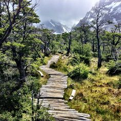 The Next Trailhead — PATAGONIA | El Chaltén, Argentina The only...
