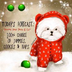 Today's forecast: chance of jammies, cookies & naps Sassy Quotes, Cute Quotes, Dog Quotes, Year Quotes, Girly Quotes, Christmas Quotes, Christmas Time, Merry Christmas, Christmas Ideas
