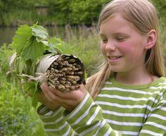 Kostenlose Bastelanleitung Natur: Insektenhotel selber basteln zum Basteln