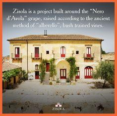"""Zisola è un progetto costruito intorno al Nero d'Avola, allevato secondo l'antico metodo ad """"alberello"""". @marchesimazzei #mazzei #zisola  #tuscany #wine"""