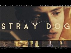 ▶ STRAY DOG - Short Film - Bertie Gilbert - Bertiebertg - YouTube