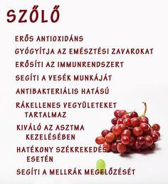 Életmód cikkek és képtár: Zöldség és gyümölcsök hatásai Health 2020, Food Hacks, How To Lose Weight Fast, Natural Health, Health And Beauty, Natural Remedies, Health Tips, Healthy Lifestyle, Healthy Living