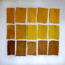 Leaf Crafts, Crafts To Do, Natural Dye Fabric, Natural Dyeing, Tinta Natural, Nature Crafts, How To Dye Fabric, Fabric Painting, Fabric Swatches