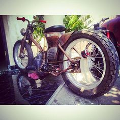 Custom Moped, Custom Bikes, Honda Cub, Moped Scooter, Hell On Wheels, Motorcycle Art, Sport Bikes, Bobber, Cubs