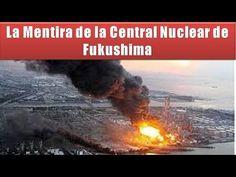 El 11 de marzo de 2011, un terremoto de magnitud 8.9 hizo temblar la costa noreste de Japón. Los temblores y el tsunami desencadenado posteriormente causaron...