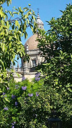 Still Summer in September San Salvador, Be Still, Taj Mahal, My Books, Cathedral, September, Patio, Orange, Building