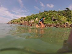 Snorkel  Ponta das canas, Floripa - SC, Brasil