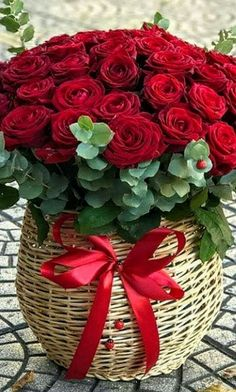 Good Morning Images Flowers, Beautiful Flowers Pictures, Beautiful Flowers Wallpapers, Beautiful Flower Arrangements, Beautiful Roses, Flower Images, Flower Pictures, Happy Birthday Flowers Wishes, Rose Flower Wallpaper