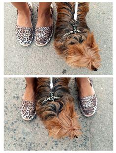 www.theguestgirl.com #flordevida #ibiza #boho style #fashion