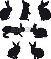 konijn/haas